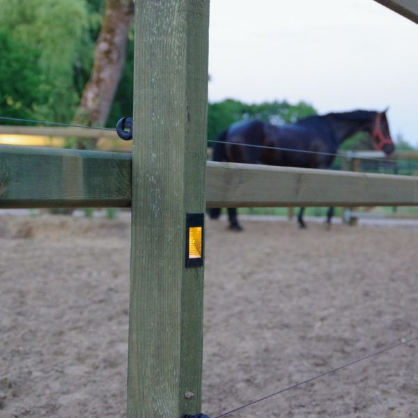 paardenbak